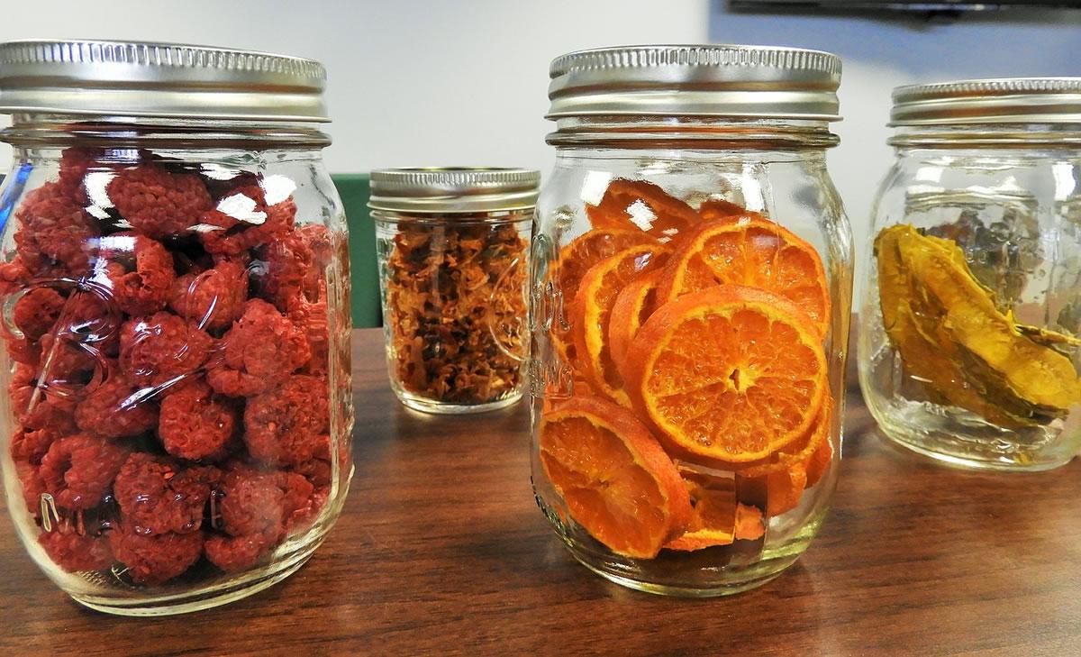 Entenda Os Processos Da Liofilização De Alimentos